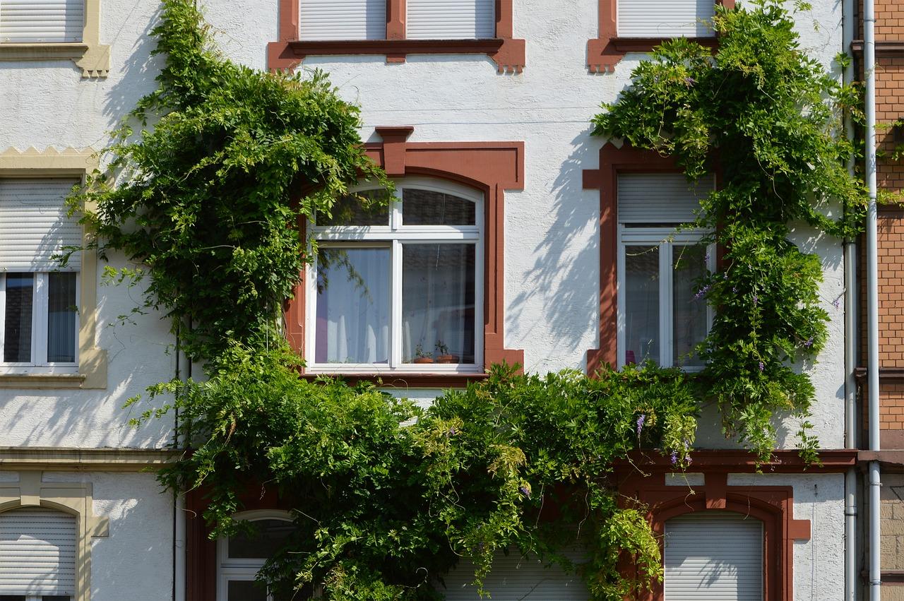 Quelle matière pour des fenêtres de qualité ?