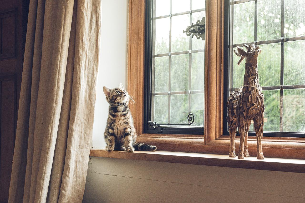 Pourquoi choisir le double vitrage pour vos fenêtres ?